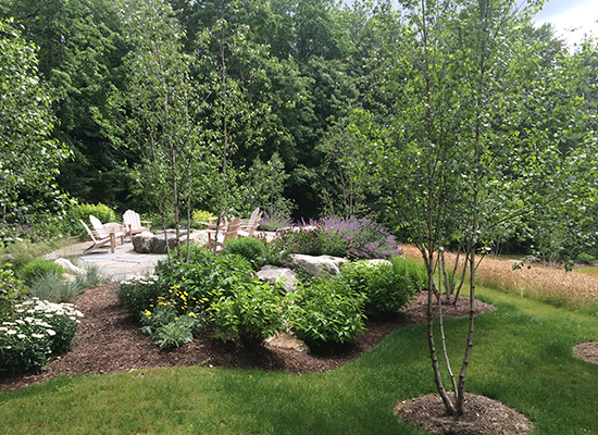 Homestead Landscaping • Tree and Shrub Care • Landscape